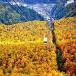 【行楽!】北海道秋の人気おススメ観光スポットTOP5