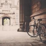 【メーカー比較!】クロスバイクはどのブランドがおすすめ?