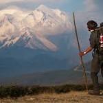 【ここで選ぶ!】登山用品トレッキングポールおすすめの選び方!