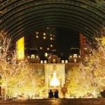 2016年のクリスマスツリーを東京都内で見るならここ!穴場厳選6!