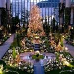 【おすすめ!】2016年関西の穴場クリスマスイルミネーションはここ!