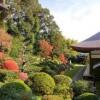 【事前に際に知っておきたい!】浜松にある龍潭寺の意外なご利益とは?