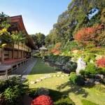 【2分で簡単に分かる!】浜松にある龍潭寺と井伊直虎との関係は?