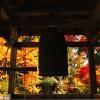 【直虎とのかかわりは?】滋賀県彦根市にある龍潭寺の詳しいご紹介!