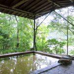 浜名湖の華咲の湯には割引クーポンはある?お得は遠鉄カード?